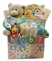 Baby gift baskets Toronto Canada